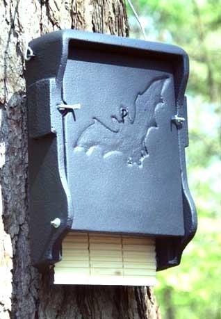 Der Fledermauskasten ist mehr als nur ein Haus aus Holz